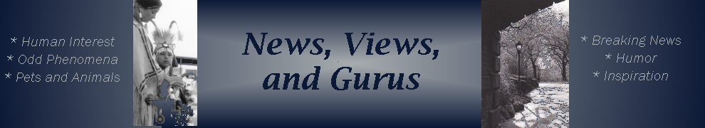 News, Views, and Gurus